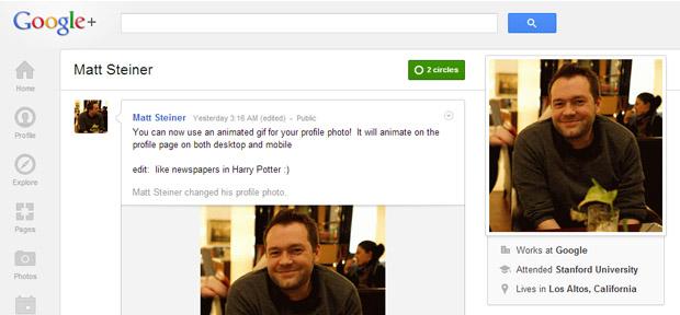 google-profile-ani