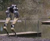 Cassie หุ่นยนต์เดิน 2 ขาที่สามารถเดิน ทรงตัว หมอบต่ำเหมือนมนุษย์